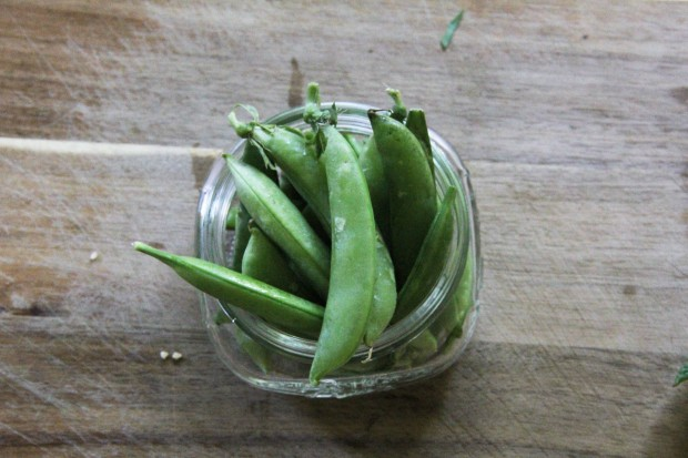 Peas in the Raw