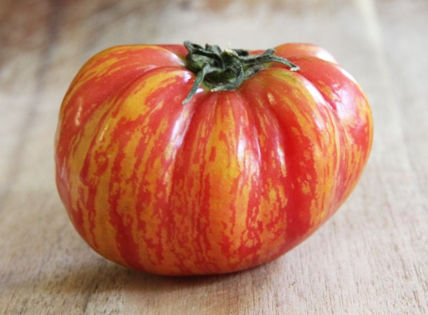 Tomato of my dreams!